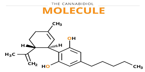 cbd-molecule-100.jpg